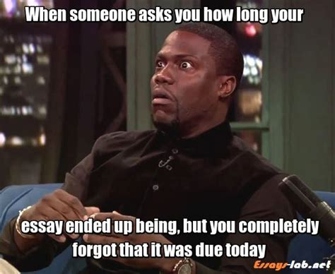 Essay Memes - 8 best student memes images on pinterest funny stuff student life and college humor