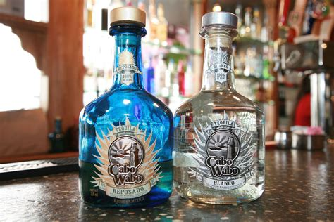 why is cabo wabo tequila so popular