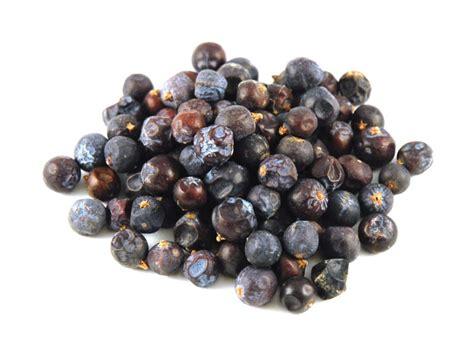 juniper berries savory spice