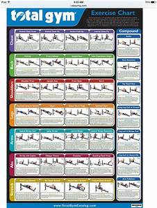 The 25  Best Total Gym Exercise Chart Ideas On Pinterest
