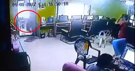 serpente volante serpente semina panico nel negozio attacca i clienti
