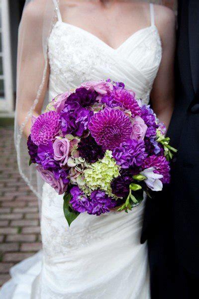 25 Best Purple Carnations Ideas On Pinterest