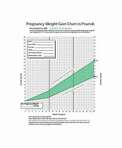 4 Sample Baby Weight Charts During Pregnancy Free