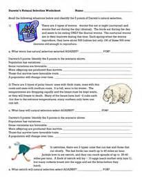darwins selection worksheet evolution