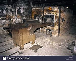 Jewish Concentration Camps Gas Chambers | www.pixshark.com ...