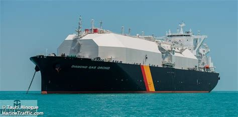 vessel details  diamond gas orchid lng tanker imo