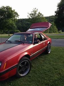 '84 Mustang 5.0 | Autos