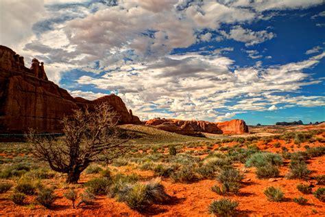 Desert Landscape Wallpapers Top Free Desert Landscape