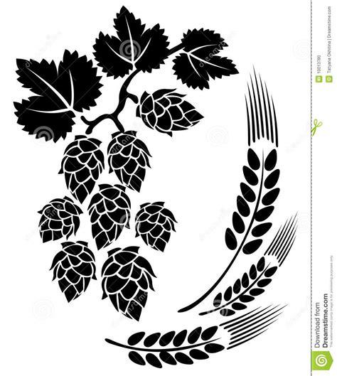 foto de Hop and ears stock vector Illustration of symbol plant