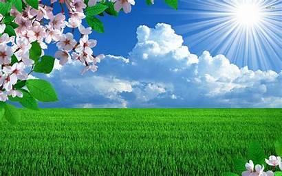Sunny Computer Spring Wallpapers Digital Wallpapersafari
