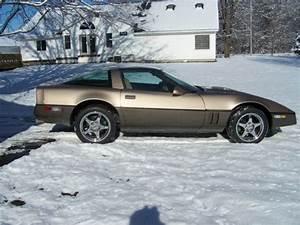 1984 Corvette Spark Plug Wiring Diagram  Corvette  Auto