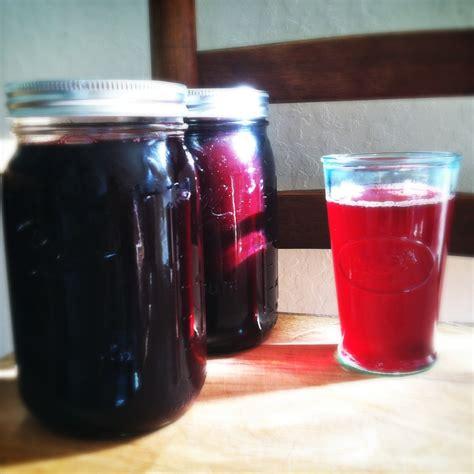juice blackberry rhubarb