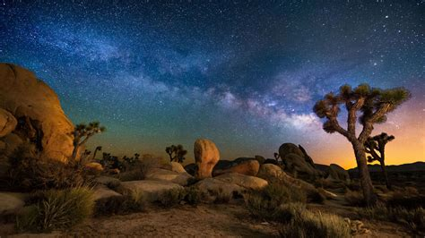 Starry Sky Desert Area Night In Joshua Tree National Park