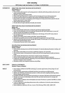 Strategic Business Development Resume Samples