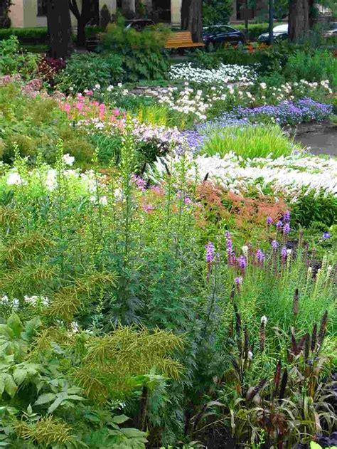 perennial garden ideas perennial shade