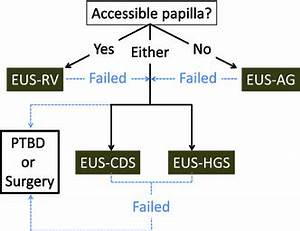 Endoscopic ultrasound-guided biliary drainage: a review ...
