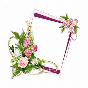 Pink Frame png with white Roses