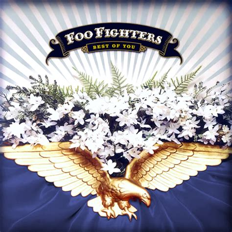 The Foo Fighters The Best Of You Rock Album Artwork Foo Fighters In Your Honor