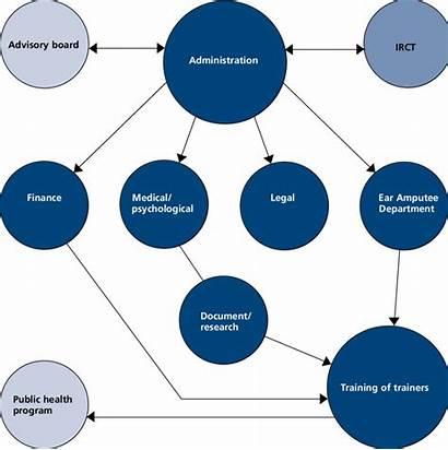 Ngo Structure Organizational Turning National Before Into