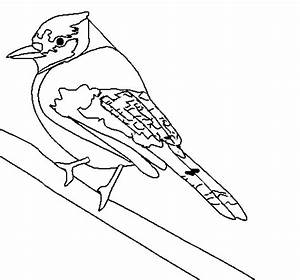 Tropical bird coloring page - Coloringcrew.com