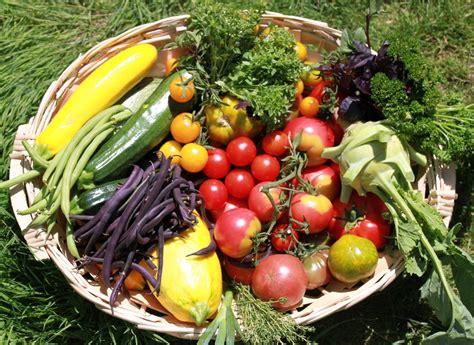 formation cuisine guadeloupe panier de légumes de l 39 epsh école professionnelle de