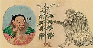 Archeological discovery in old grave indicates that the Chinese smoked weed 2,500 years ago…