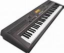 Casio WK110 76-Key Electronic Keyboard | zZounds