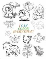 Coloring Everything Preschooler Toddler Activity Notebooks Blossom Awesome Animals Flowers Fun Shapes Giant Gre sketch template