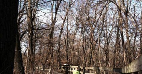 exploring fontenelle forest with a great nature
