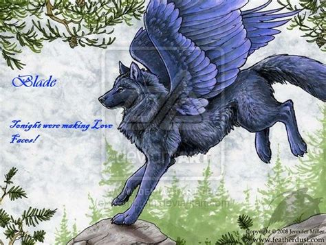 24 Best Winged Wolf Pack Images On Pinterest
