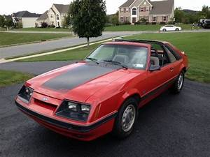 """1986 Mustang GT """"Cobra"""" T-Top -- 89k Original miles for sale in Florida, New York, United States ..."""