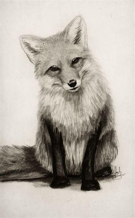 animal drawings drawings art gallery