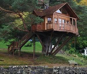 Lodge treehouse