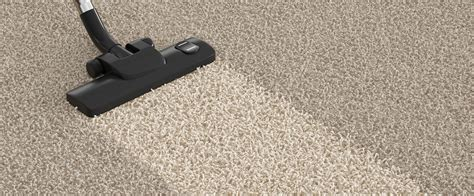 Carpet Cleaners Carpet Cleansing Essentials Carpet Cleaning Multi Service Direct