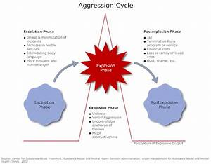 Example Image  Aggression Cycle