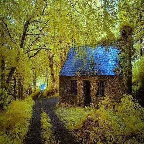 Cottage Irlanda by 25 Best Ideas About Cottages Ireland On