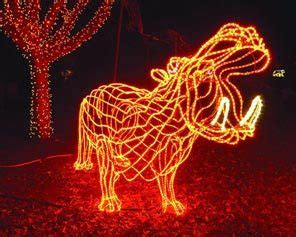 oregon zoo doubles max discount for zoolights portland