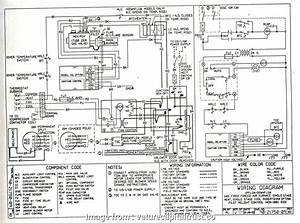 24 Volt Thermostat Wiring Diagram Perfect York  Furnace