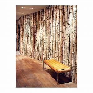 Branche De Bouleau : tronc de bouleau lg 200 cm x 5 7 cm sous sol ~ Melissatoandfro.com Idées de Décoration