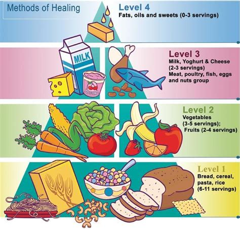 The USDA Food Pyramid (The Original Diet Scam)