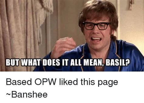 What Does Meme Mean - but what does it all mean basil based opw liked this page banshee dank meme on sizzle