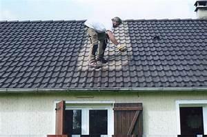 Nettoyage Toiture Karcher : demoussage toiture reims entretien toiture marne nettoyage toiture 51 pose v lux reims isol ~ Dallasstarsshop.com Idées de Décoration