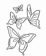 Coloring Butterflies Flying Park Four Butterfly Pages sketch template
