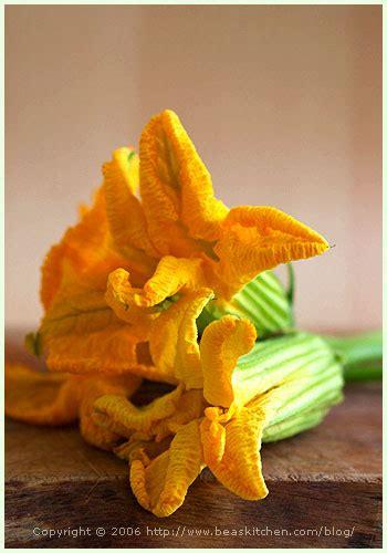 cuisiner la fleur de courgette stuffed zucchini flowers fleurs de courgette farcies