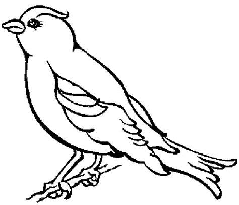 jeu de cuisine gratuit coloriage oiseaux gratuit 12119 animaux