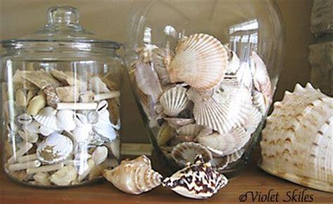 decorate  home  seashells  seashell crafts