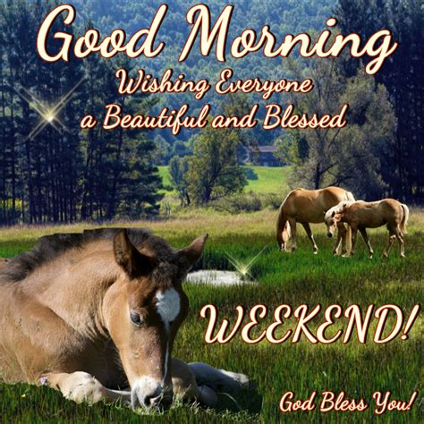 good morning wishing   beautiful  blessed