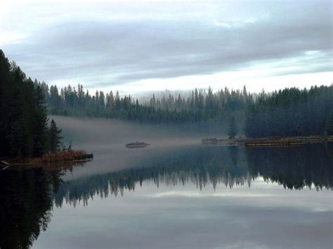 moose creek reservoir idaho birding trail