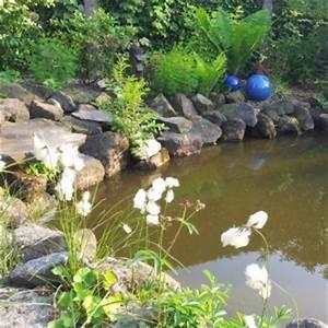 Wasserpflanzen Teich Kaufen : gastartikel eine vielfalt an teich und wasserpflanzen ~ Michelbontemps.com Haus und Dekorationen