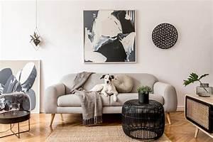 12, Gorgeous, Gray, Room, Ideas